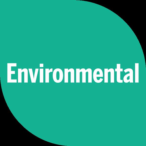 Environmental on green petal
