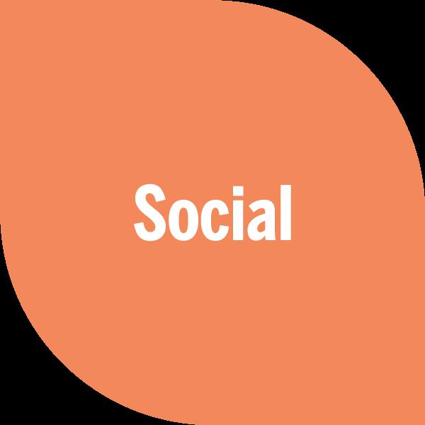 Social on orange petal
